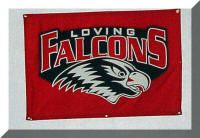 Loving Falcons