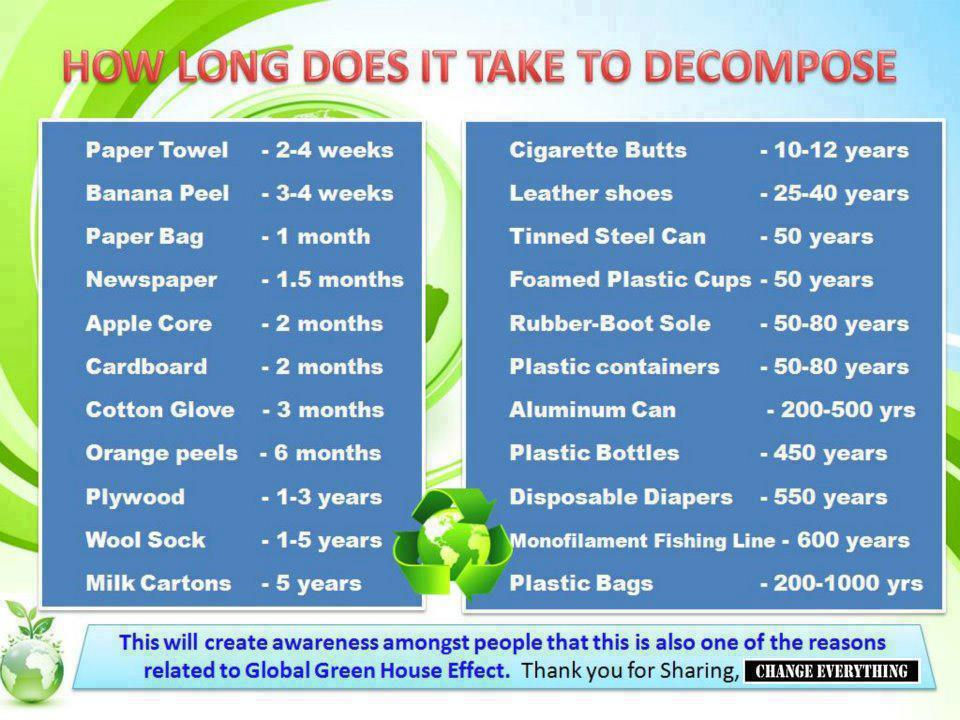 How Long Does it Take to Decompose...